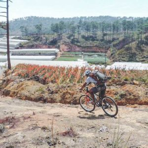 Crazy 8 mountain biking Dalat