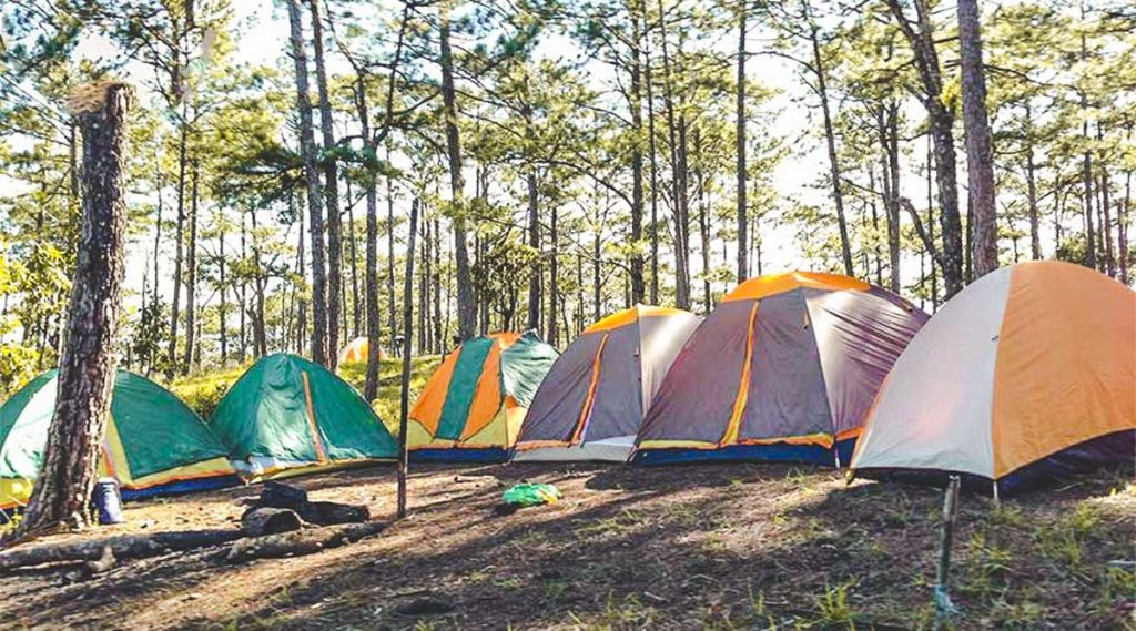Jungle fever trekking and camping in Dalat