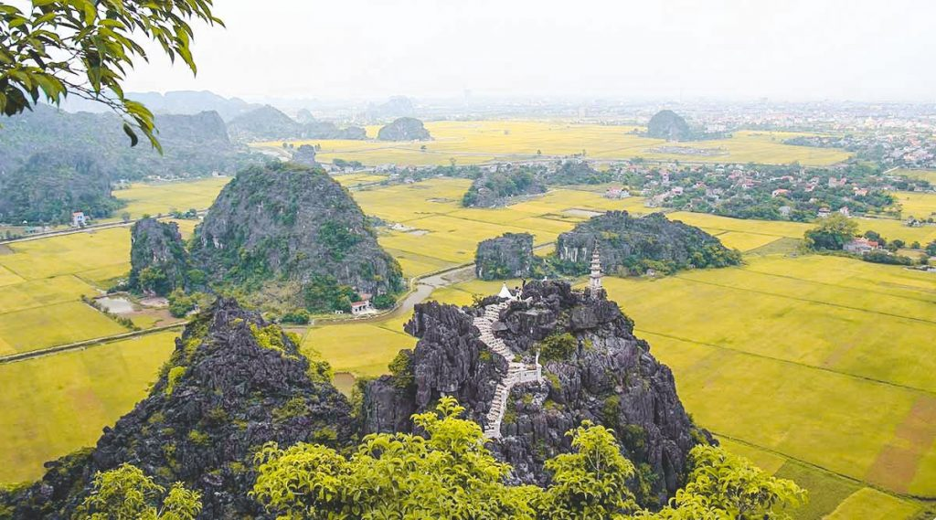 rice fields viewpoint Mua Cave