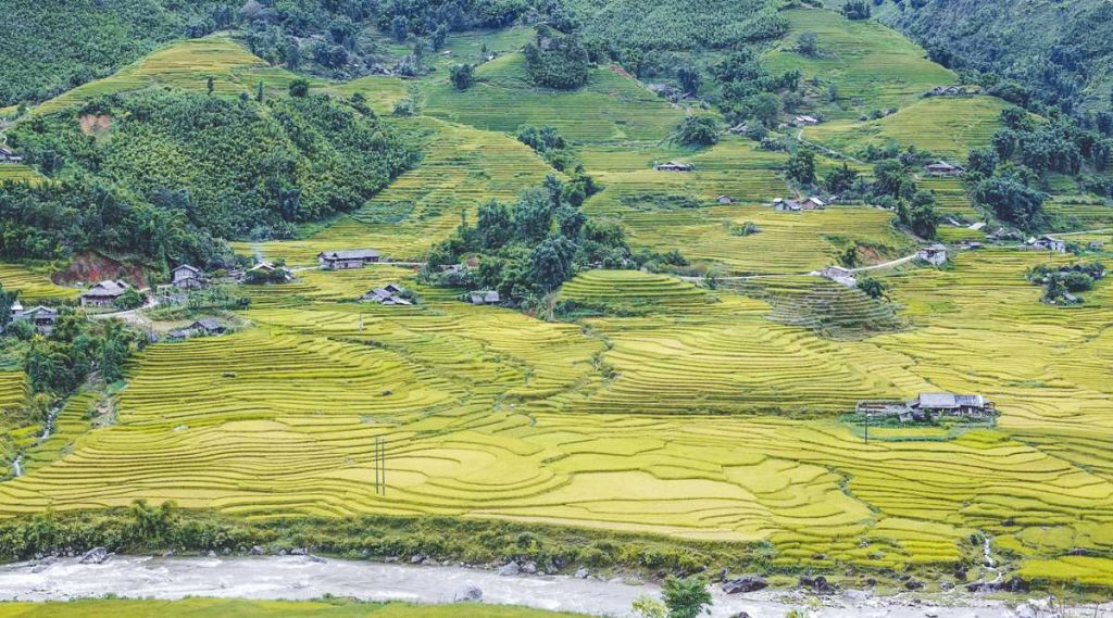 Muong Hoa Valley trekking