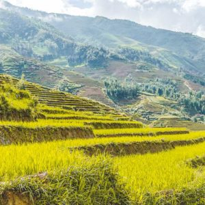 Sapa trekking off the beaten track
