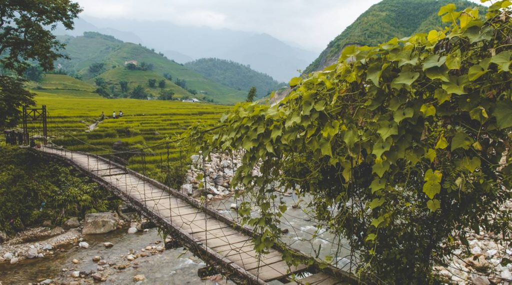 Ta Van hanging bridge