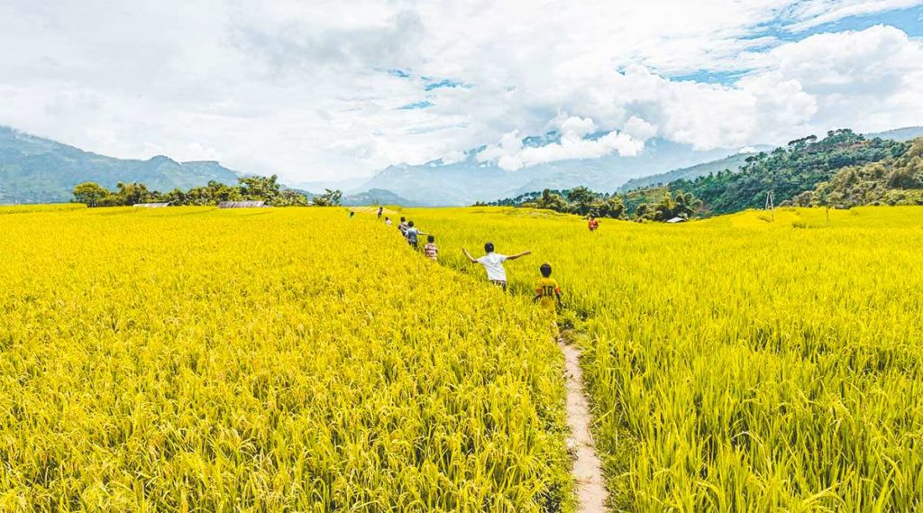 Hoang Su Phi best travel time