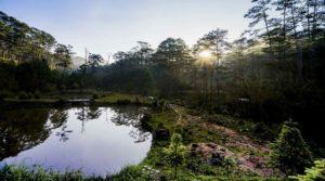 Bidoup National park